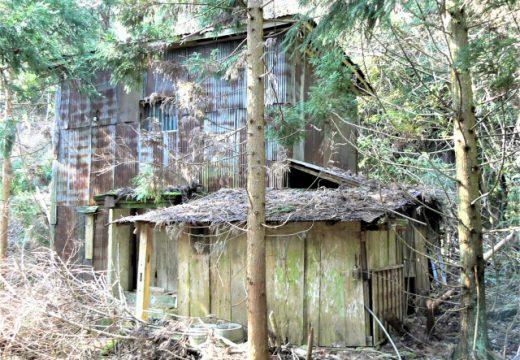 再建築不可物件を保有するリスク